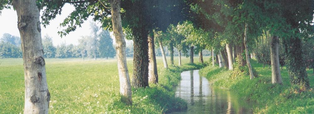 Rio Draganziolo
