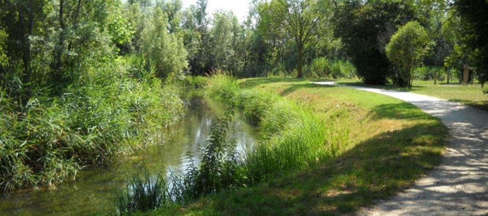 Manutenzione gentile: esempio di mantenimento di vegetazione erbacea al piede della sponda e di  fruibilità compatibile con il corso d'acqua sullo scolo Draganziolo a Trebaseleghe
