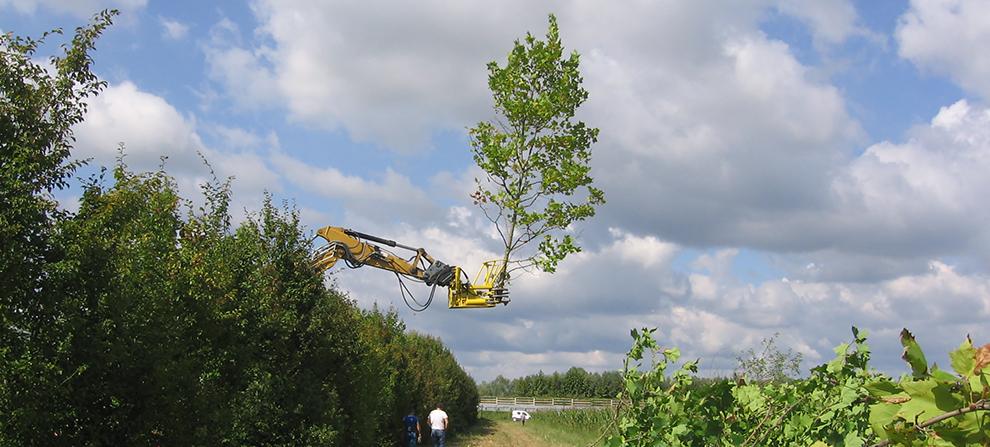 Bonisiolo di Mogliano Veneto (TV). Mezzo d'opera con cesoia idraulica forestale per diradamento selettivo di arbusti e piccoli alberi